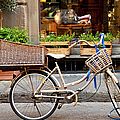 Florence Bicycle  by Brian Jannsen