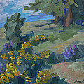 Flowering Meadow by Diane McClary