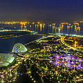 Gardens By The Bay by Mario Legaspi