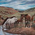 Gathering At Diablo Canyon by Ricardo Chavez-Mendez