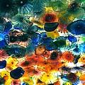 Glass Flowers by Ernesto Cinquepalmi
