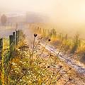 Good Morning Farm by Debra and Dave Vanderlaan