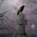 Surreal Crow In Gothic Purple Sky by Gothicrow Images