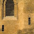 Granada Cathedral by Guido Montanes Castillo