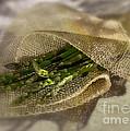 Green Asparagus On Burlab by Iris Richardson