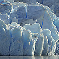 Grey Glacier In Chilean National Park by John Shaw