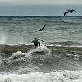 Gulf Coast Surfing by David Faison