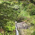 Hana Waterfall by Jenna Szerlag
