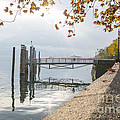 Harbor by Mats Silvan