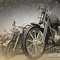 Harley Davidsons by Perry Van Munster