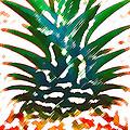 Hawaiian Pineapple by James Temple