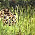 Hide And Seek by Sandy Brooks