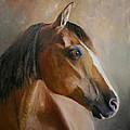 Horse Portrait II by Terri  Meyer