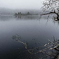 Hosmer Pond In Camden Maine by Marty Saccone