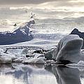 iceland Jokulsarlon by Gunnar Orn Arnason