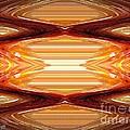 Intrepid Zigzags by J McCombie