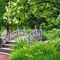 Japanese Garden by Gabi Siebenhuehner
