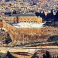 Jerusalem From Mount Olive by Thomas R Fletcher