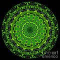 Kaleidoscope Of Glowing Circuit Board by Amy Cicconi