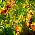 Kelp Forest by Venetta Archer