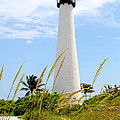 Key Biscayne Lighthouse by Carey Chen