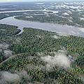 Kikori River In The Rainforest Kikori by Gerry Ellis