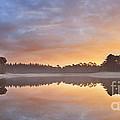 Lake Reflections by Sara Winter