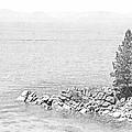 Lake Tahoe Rocky Point by Frank Wilson