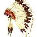 Lakota Headdress by Michael Vigliotti