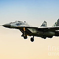 Landing Jet-fighter by Nick  Biemans