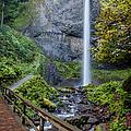 Latourell Falls by Brian Jannsen