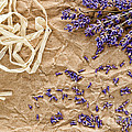 Lavender Flowers And Seeds by Olivier Le Queinec