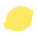 Lemon by Jackie Farnsworth