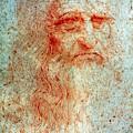 Leonardo Da Vinci (1452-1519) by Granger