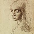 Leonardo Da Vinci Artwork by Sheila Terry