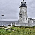 Lighthouse by Bill Hosford