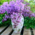 Lilacs by Diana Besser