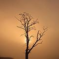 Loch Ard Glow by Grant Glendinning