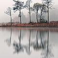 Loch Ard Reflections by Grant Glendinning