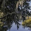 Lowcountry Creek by Dale Powell
