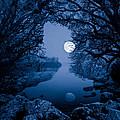Luna by Tomasz Wieja