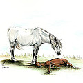 Mare And Foal by Shari Nees
