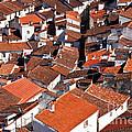 Medieval Town Rooftops by Jose Elias - Sofia Pereira