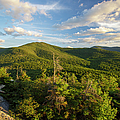 Middle Sugarloaf Mountain - Bethlehem Nh Usa by Erin Paul Donovan