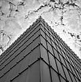 Modern Architecture by Chevy Fleet