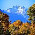 Montana Fall by Joseph J Stevens