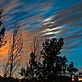 Moondance by Steve Harrington