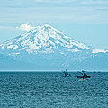 Mount Redoubt Across Cook Inlet From Ninilchik-ak   by Ruth Hager