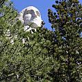Mt. Rushmore by Steve Javorsky