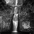 Multnomah Falls by Peter Tellone